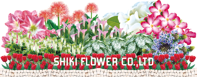 志木フラワー SHIKI FLOWER CO., LTD